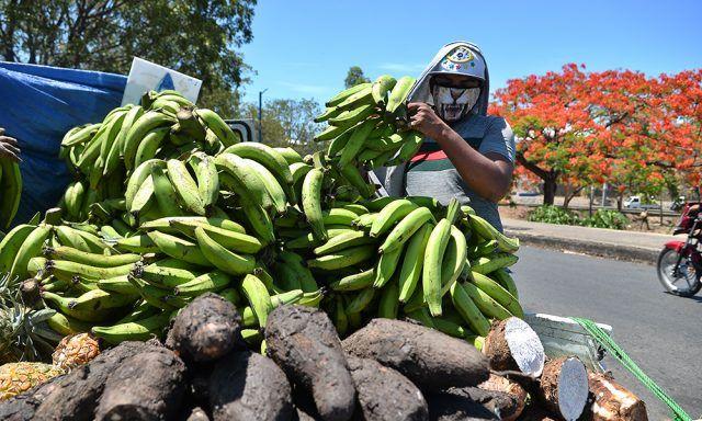 Sobreproducción de pollo y plátano hace bajar precios