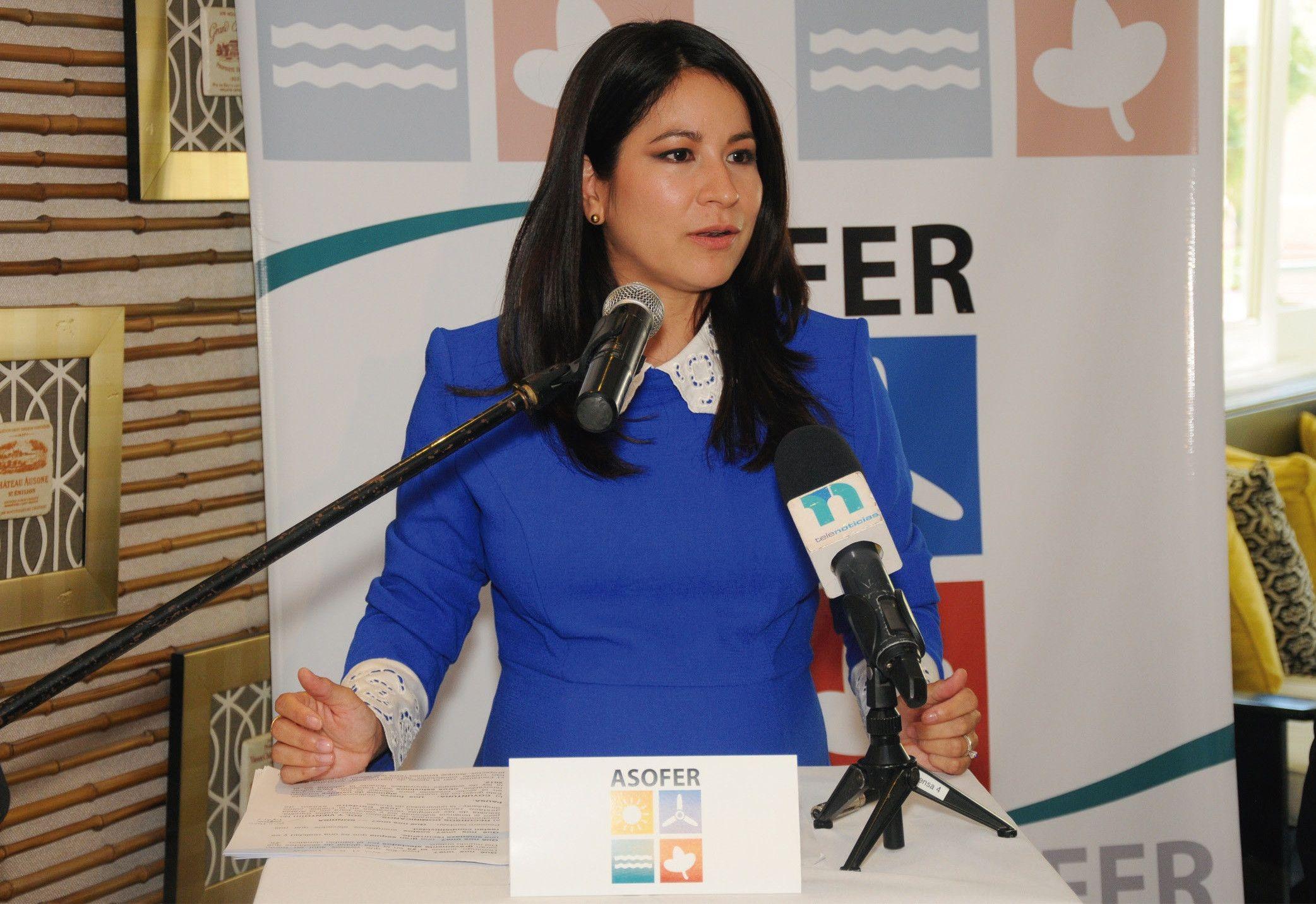 Las energías renovables en la agenda dominicana de Sostenibilidad