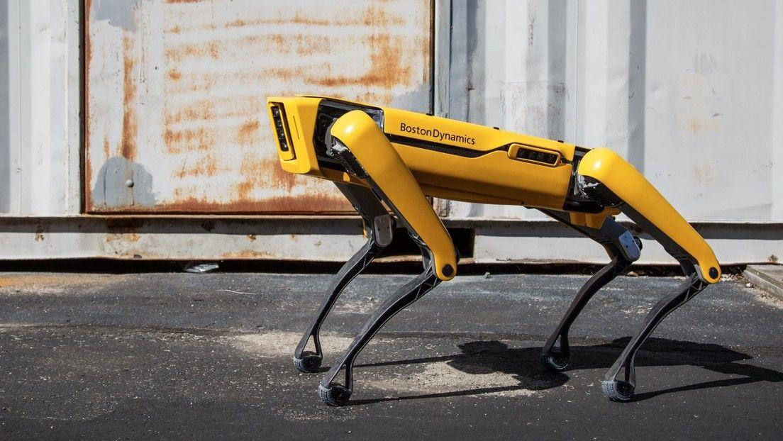 <p>El perro robot de Boston Dynamics ahora sirve cervezas en Sevilla</p>