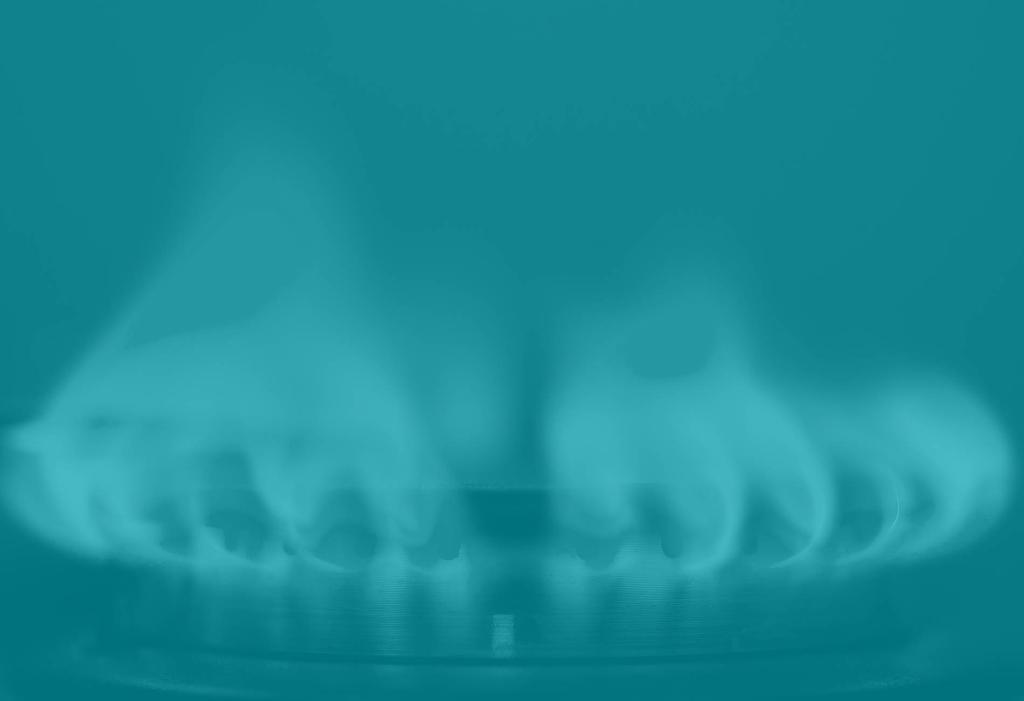 Dar de alta el gas natural. Precios, plazos y documentación