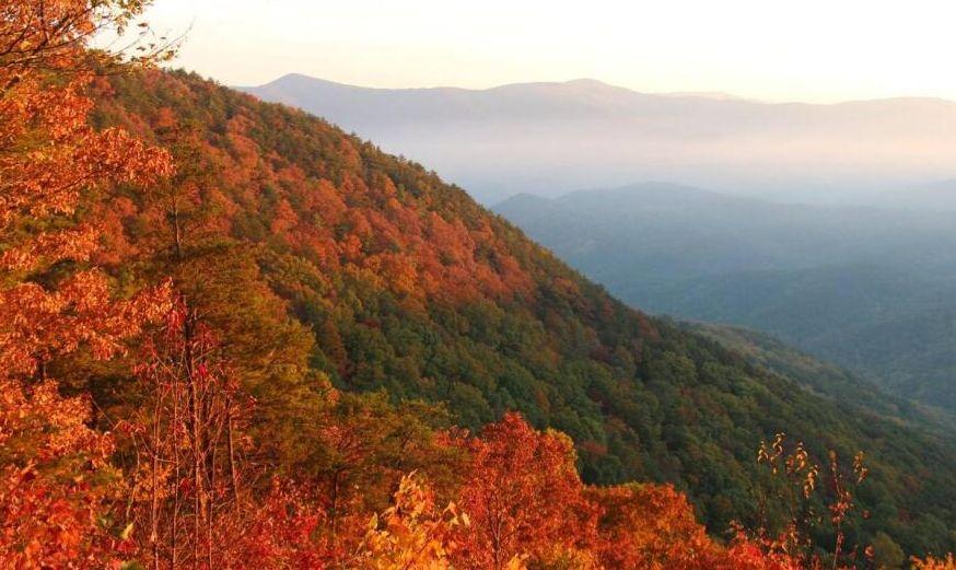 Estos son algunos de los mejores senderos para visitar en Georgia durante el otoño